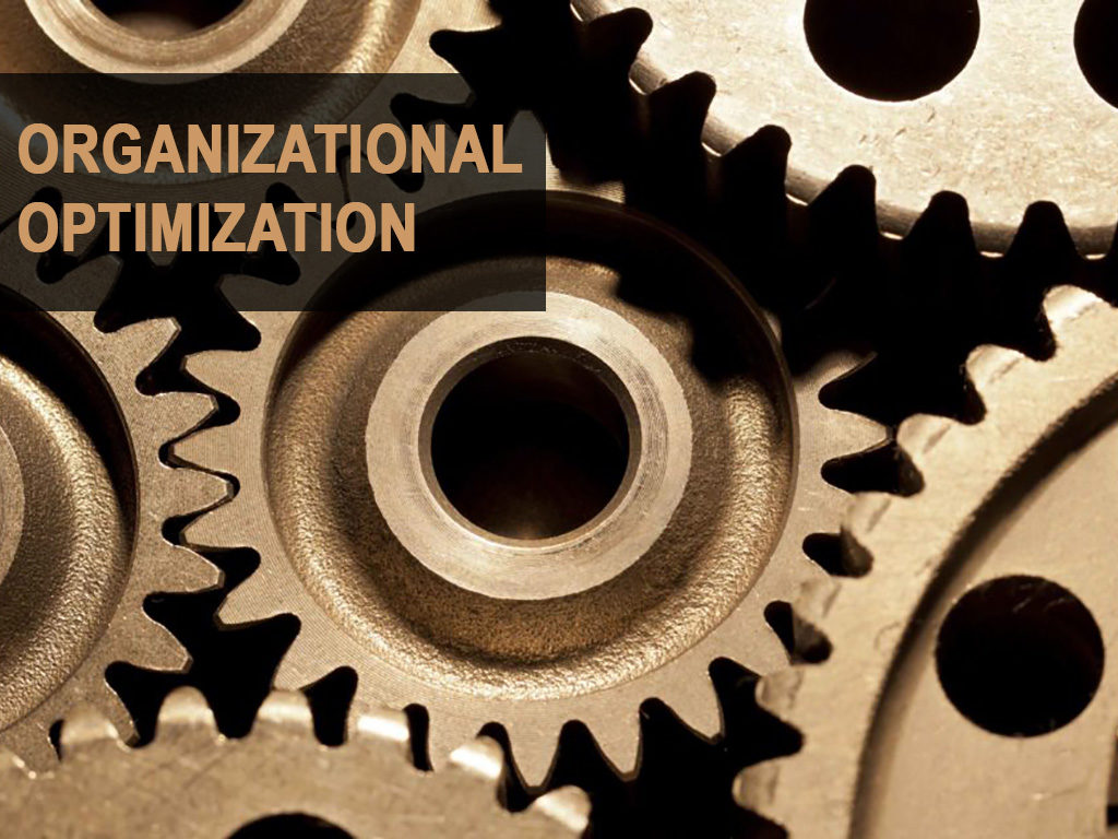 Organizational Optimization